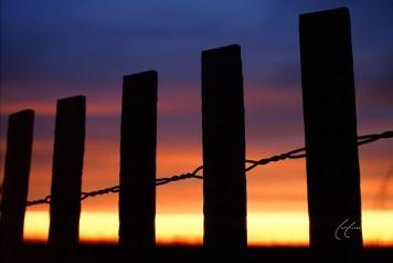 Burning Fence Ties
